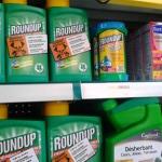 Action contre le Roundup chez Castorama