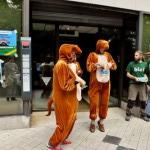 A3 kangourous reçus par le directeur régional de la Société Générale